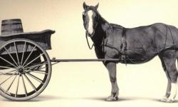 Пак слагат каруцата пред коня