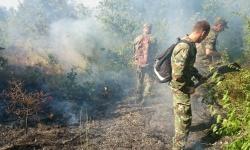 Армията участва в гасенето на пожарите