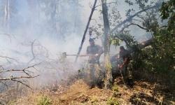 Военнослужещи продължават да оказват помощ в борбата с пожарите