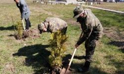 В Казанлък залесяват около паметника на 23 Пехотен Шипченски полк
