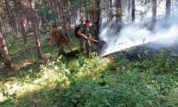 Военнослужещи от Сухопътните войски помагат за потушаването на пожара в Свиленградско