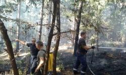 Военнослужещите от 61-ва бригада продължават гасенето на пожара над с. Розино