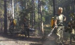 Военнослужещи от Сухопътните войски участват в гасенето на пожари в областите Хасково, Благоевград