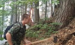 Артилеристите от Асеновград продължават да гасят пожара над с. Югово